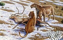 Lion des cavernes, peint par Mauricio Anton