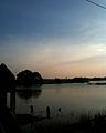 Evening Dip (5801009240).jpg