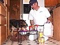 FEMA - 12833 - Photograph by Mike Howard taken on 05-01-2004 in Washington.jpg