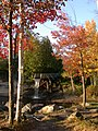 Fall at Crooked Slide Park - panoramio.jpg