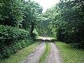 Farm Track, near Dommett Moor - geograph.org.uk - 1376564.jpg