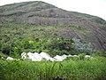 Farming at the side^^^ - PARNASO - panoramio.jpg