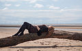 Female reclining on driftwood on the beach.jpg