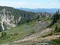 Field of lupine. Stevens Canyon behind. (57760b767a7d476799a20285999265e6).JPG