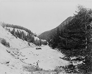 Angling in Yellowstone National Park - Man fishing in the Yellowstone River, 1909