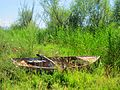 Fishing boat in plants despite Prespa lake.jpg