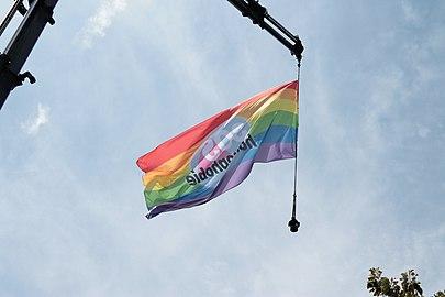 Flag, Pride Lyon 2018.jpg