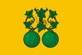 Flag of Balashov (Saratov oblast).png