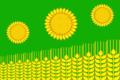 Flag of Ilinskoe (Kushchyovsky rayon).png