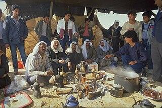 Negev Bedouin ethnic group