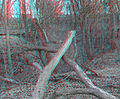 Flickr - jimf0390 - JimF 03-08-12 0008a up the ravine.jpg
