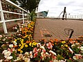 Flowerbed at Hull Pier - geograph.org.uk - 1479453.jpg