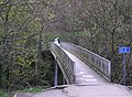 Footbridge to Round Howe. - geograph.org.uk - 160450.jpg
