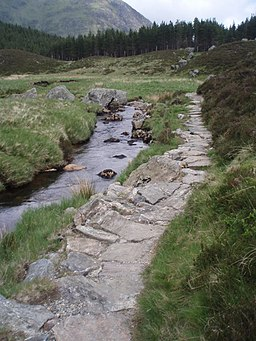Footpath, Corrie Fee. - geograph.org.uk - 456660