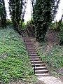 Footpath Steps - geograph.org.uk - 1247884.jpg