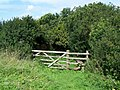 Footpath To St Anthony - geograph.org.uk - 1480783.jpg
