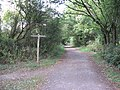 Footpath crossing the Downs Link - geograph.org.uk - 1492698.jpg