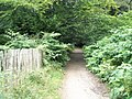 Footpath running adjacent to Tilford Road - geograph.org.uk - 932415.jpg