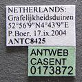 Formica pressilabris casent0173872 label 1.jpg