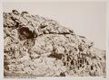 Fotografi av grotta med gravar - Hallwylska museet - 103081.tif