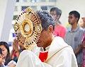 Fr Paulino Miranda.jpg