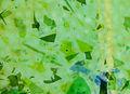 Fractureglass crop.jpg