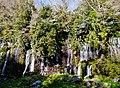 Fujinomiya Shiraito-Wasserfall 28.jpg