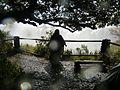 Fun at Victoria Falls.jpg