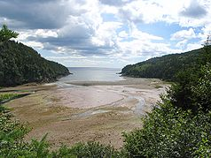 Blick in die Bay of Fundy