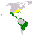 Gallinula galeata distribution map.png