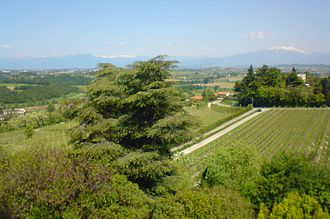 Custoza - The rural area of Custoza