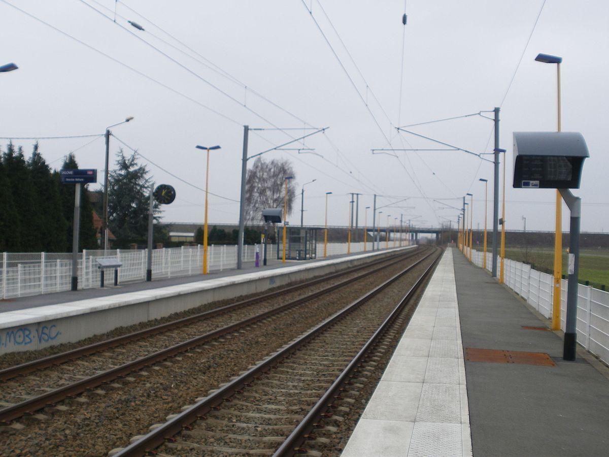 Portail Des Flandres Salome gare de salomé — wikipédia