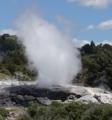 Gejzer w Rotorua na Nowej Zelandii.png