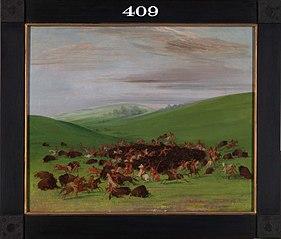 Buffalo Chase, a Surround by the Hidatsa
