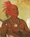 George Catlin - Pam-a-hó, The Swimmer, One of Black Hawk's Warriors - 1985.66.13 - Smithsonian American Art Museum.jpg