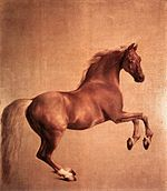 George Stubbs - Whistlejacket - WGA21951.jpg