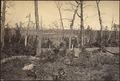 Georgia, Resacca, Battle ground of - NARA - 533394.tif