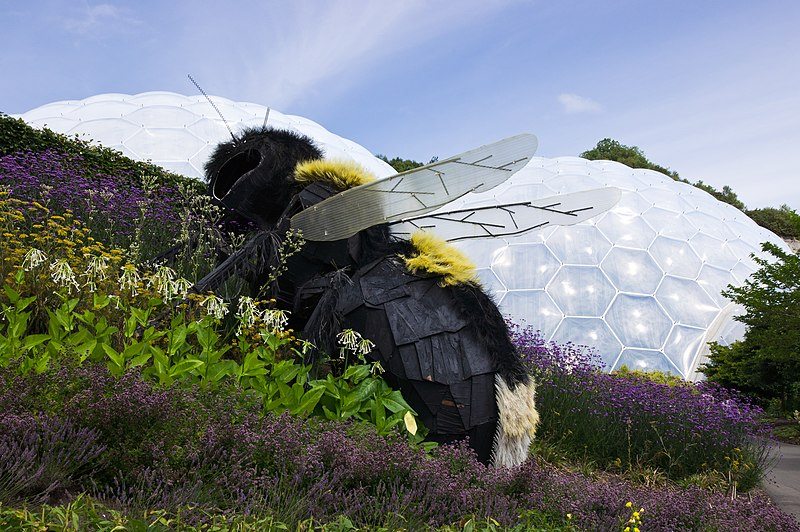 File:Giant Bee Eden Project.jpg