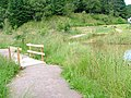 Glenmullie Picnic Area - geograph.org.uk - 37273.jpg