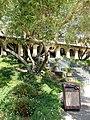 Gloria Ferrer Caves and Vineyards, Sonoma Valley, California, USA (8521692599).jpg