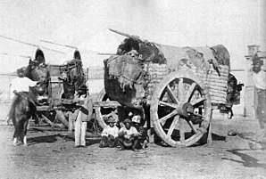 "Economic history of Argentina - Field wagons (""carretas"") were introduced by the Spaniards at the end of the 16th century as transport for passengers and goods."
