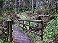 Gortin Glens Forest Park (19) - geograph.org.uk - 1712683.jpg