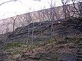 Gotické hradby u Folimanky.jpg