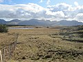 Grassy Moorland above Tullyconor Bridge, looking towards Lough Nambrackkeagh - geograph.org.uk - 1846951.jpg