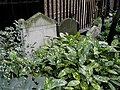 Gravestones in St Ann's Churchyard - geograph.org.uk - 922777.jpg