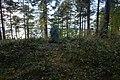 Gravfält Ås 13 1.jpg