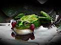 Green Frog 1.jpg