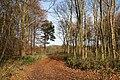 Hainton Park - geograph.org.uk - 1051696.jpg