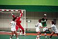Handball at the 1988 Summer Olympics - Women's Tournament.jpg