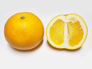 Japanese citrus - Hassaku whole and halved.